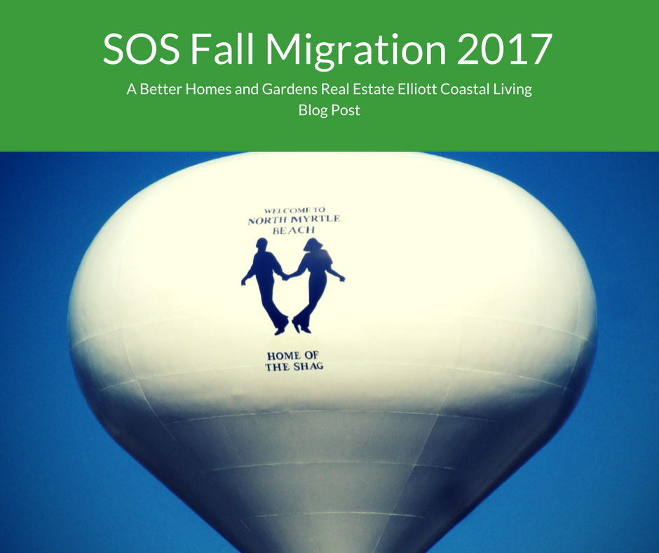 SOS Fall Migration 2017 shag dancing